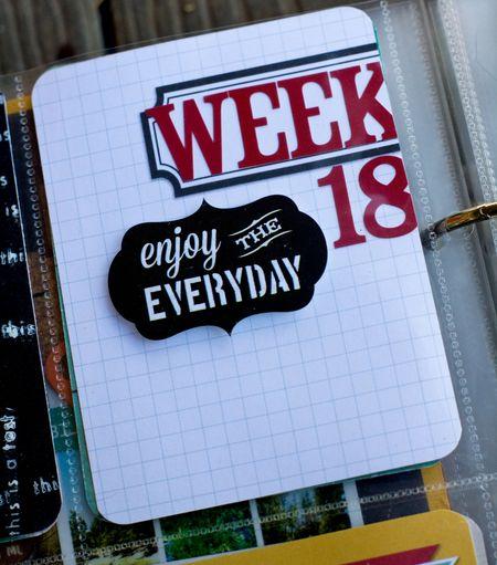 Week 18_0008