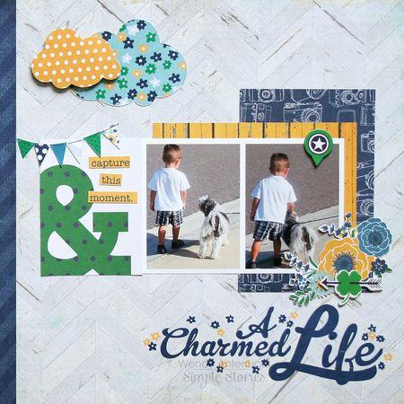A Charmed Life Feb 2014